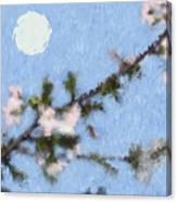 Blossoms In Moonlight Canvas Print