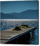Blue 2 Canvas Print