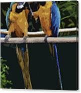 Blue And Gold Macaw 1 Canvas Print
