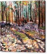 Blue Bell Woods Canvas Print