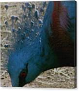 Blue Bird Portrait Canvas Print