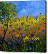Blue Cornflowers 7761 Canvas Print