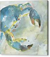 Blue Crab. Canvas Print
