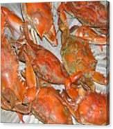Blue Crabs Canvas Print