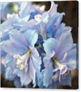 Blue Delphinium Canvas Print