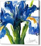 Blue Dutch Iris For Kappa Kappa Gamma Canvas Print