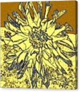 Blue-edged Dahlia Canvas Print