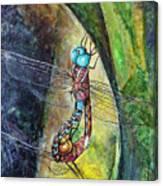 Blue-eyed Darner Mating Wheel Canvas Print