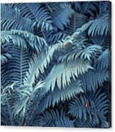 Blue Fern Leaves Abstract. Nature In Alien Skin Canvas Print