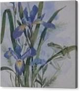 Blue Flags Canvas Print
