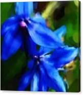 Blue Flower 10-30-09 Canvas Print