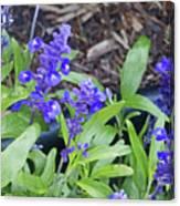 Blue Flower B6 Canvas Print