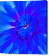 Blue Flower Canvas Print