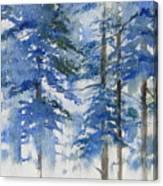 Blue Forrest Canvas Print