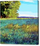 Blue Grass Sunny Day Canvas Print