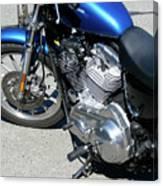 Blue Harley Canvas Print