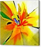 Blue Heart Of The Tulip Canvas Print