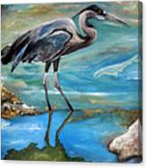 Blue Heron I Canvas Print