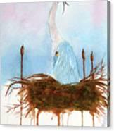 Blue Heron Nesting Canvas Print