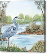 Blue Heron Of The Marshlands Canvas Print