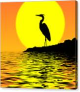 Blue Heron Sunset Canvas Print