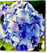 Blue Hues Canvas Print