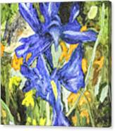 Blue Iris Painting Canvas Print
