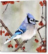 Blue Jay In Snowfall 3 Canvas Print