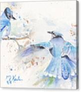 Blue Jays Canvas Print