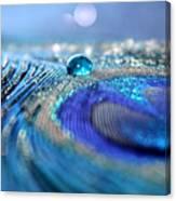 Blue Karma Canvas Print