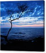 Blue Kona Canvas Print