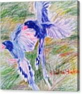 Blue Magpies Canvas Print