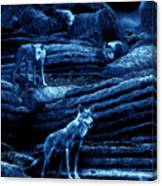 Blue Moon Wolf Pack Canvas Print