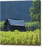 Blue Mountain Farm Canvas Print