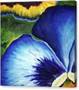 Blue Pansies  Canvas Print