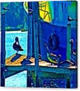 Blue Pelicans Canvas Print
