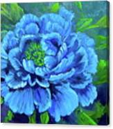 Blue Peony Jenny Lee Discount Canvas Print