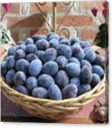 Blue Plums In A Basket Canvas Print