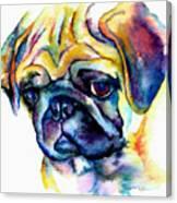 Blue Pug Canvas Print