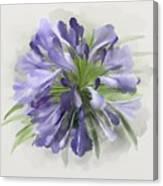 Blue Purple Flowers Canvas Print