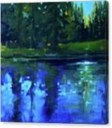 Blue Reflection Canvas Print