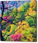Blue Ridge Autumn Canvas Print