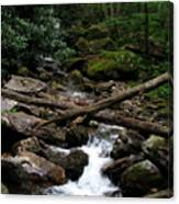 Blue Ridge Brook Canvas Print
