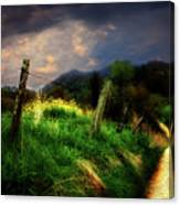 Blue Ridge Mountain Country Road Canvas Print