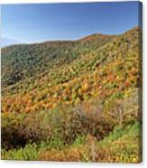 Blue Ridge Mountains In Autumn Canvas Print