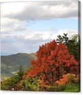 Blue Ridge Parkway, Buena Vista Virginia 5 Canvas Print