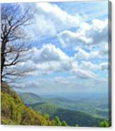 Blue Ridge Parkway Views - Rock Castle Gorge Canvas Print
