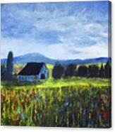 Blue Ridge Valley Canvas Print