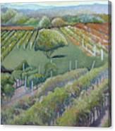 Blue Ridge Vineyards 4.0 Canvas Print
