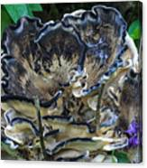 Blue Rimmed Fungus Canvas Print